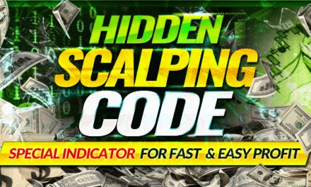 Hidden Scalping Code Review